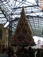 東京ディズニーランド(TDL)クリスマスファンタジー2006 クリスマスツリー