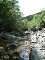 入川渓谷夕暮キャンプ場 埼玉 秩父